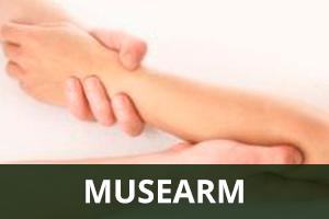 musearm