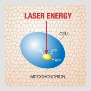 Laser stimuleret ATP